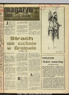 Słowo Ludu : dziennik Polskiej Zjednoczonej Partii Robotniczej, 1990 R.XLI, nr 40 (magazyn)