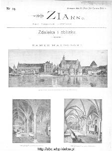 Ziarno : pismo tygodniowe ilustrowane 1902, nr 24