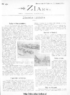 Ziarno : pismo tygodniowe ilustrowane 1902, nr 45