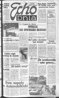 Echo Dnia 1991, R.21, nr 196