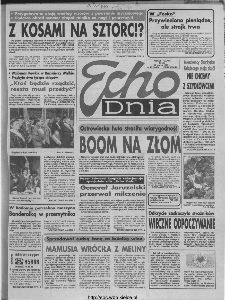 Echo Dnia 1993, R.23, nr 48