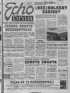 Echo Dnia 1994, R.24, nr 195