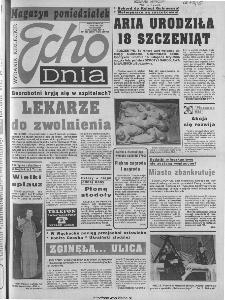 Echo Dnia 1994, R.24, nr 233