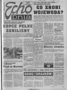Echo Dnia 1994, R.24, nr 235