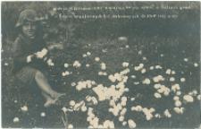 Grad w Kielcach 10.06.1916